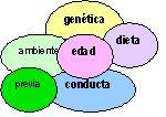 Introducción a Fisiopatología
